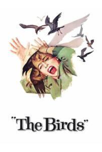 The Birds (1963) นก นก นก
