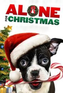 Alone for Christmas (2013) แก๊งน้องหมาโดดเดี่ยวผู้น่ารัก