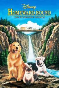 Homeward Bound: The Incredible Journey (1993) สองหมาหนึ่งแมว ใครจะพรากเราไม่ได้